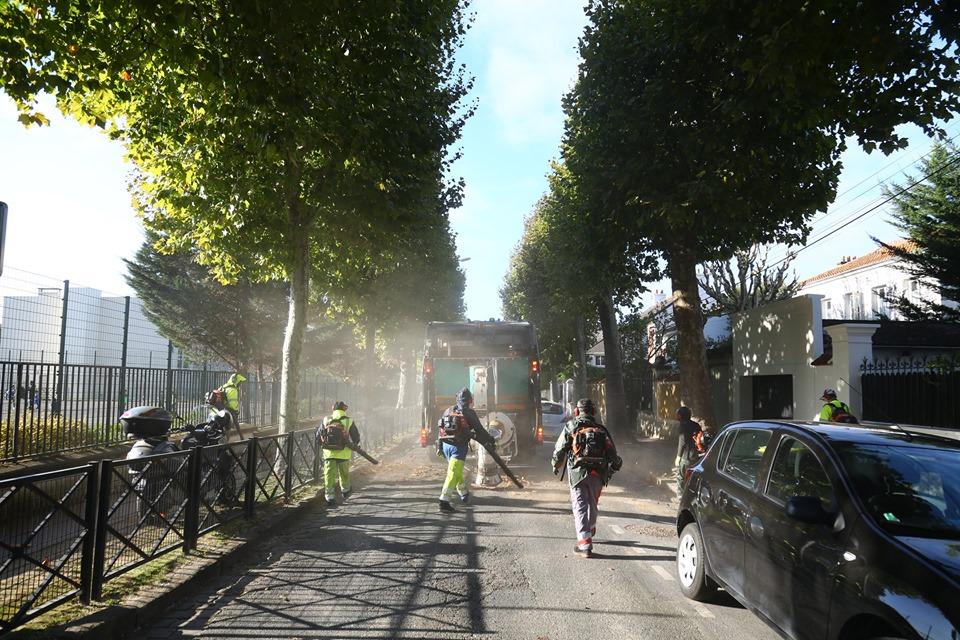 RAMASSAGE DES FEUILLES : C'EST PARTI !